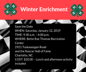 Cover photo for 2019 4-H Winter Enrichment - TEENS!!